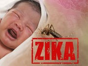 Report Suggests Zika's Effect on Fetus May Be Even Deadlier Than Thought
